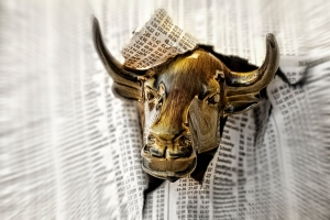 Bull looking through torn page of newspaper
